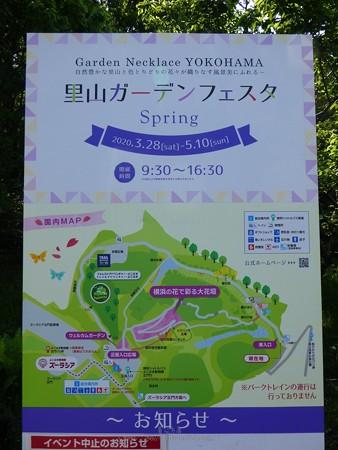 200429-里山ガーデン (7)