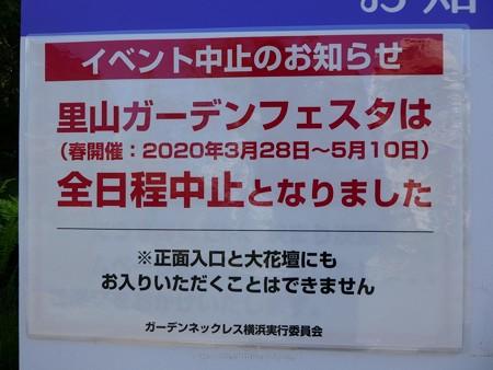 200429-里山ガーデン (8)