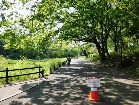 200429-里山ガーデン (13)