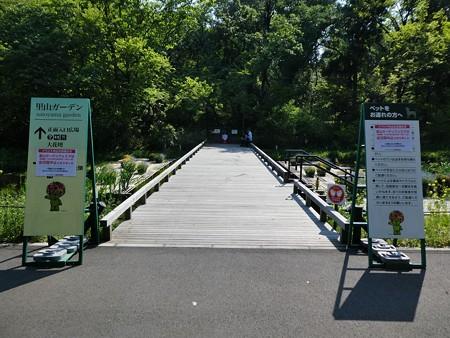 200429-里山ガーデン (28)