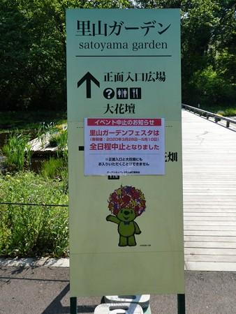200429-里山ガーデン (29)