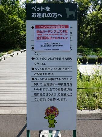 200429-里山ガーデン (31)
