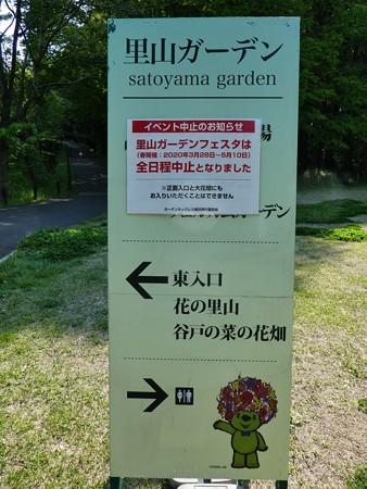200429-里山ガーデン (54)
