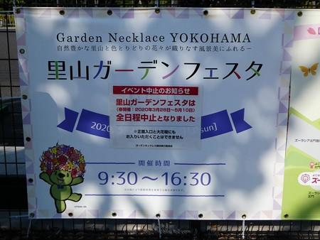 200429-里山ガーデン (98)