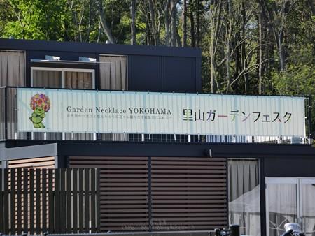 200429-里山ガーデン (107)