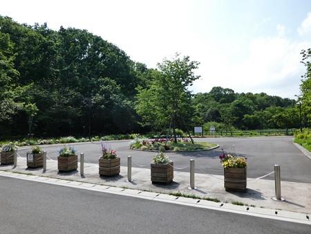 200511-里山ガーデン (3)