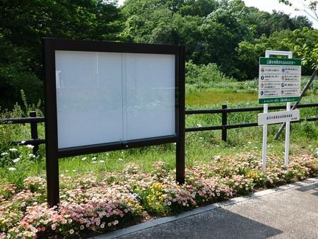 200511-里山ガーデン (5)