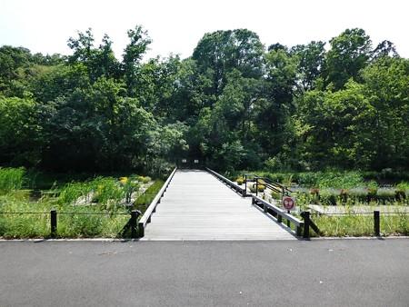 200511-里山ガーデン (6)