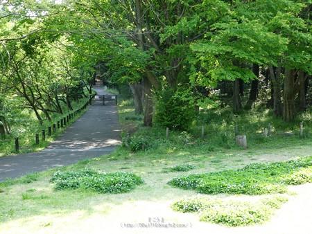 200511-里山ガーデン (17)