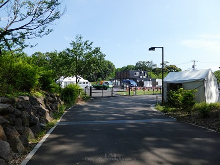 200511-里山ガーデン (18)