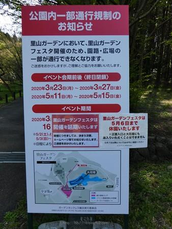 200406-里山ガーデン (33)