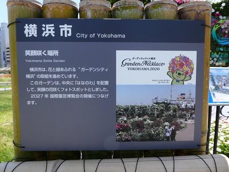 200525-ひろしまはなのわ 横浜市花壇 (3)