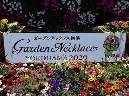 200525-ひろしまはなのわ 横浜市花壇 (5)