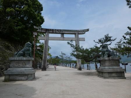 200525-宮島・厳島神社 (52)