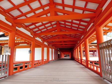 200525-宮島・厳島神社 (68)