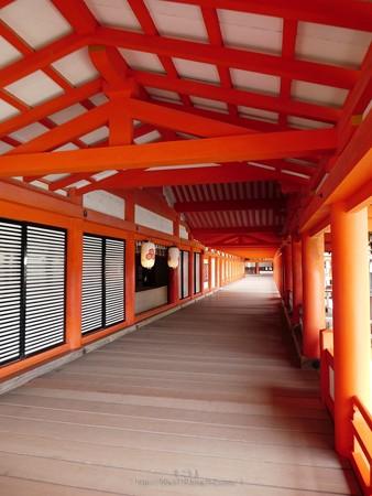 200525-宮島・厳島神社 (69)