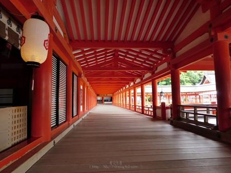 200525-宮島・厳島神社 (73)