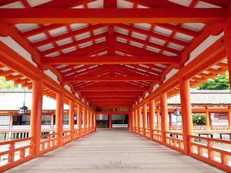 200525-宮島・厳島神社 (76)