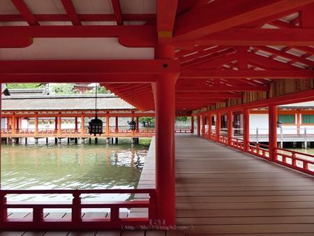 200525-宮島・厳島神社 (88)
