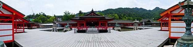 200525-宮島・厳島神社 (96)