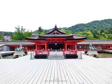 200525-宮島・厳島神社 (98)
