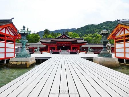 200525-宮島・厳島神社 (100)