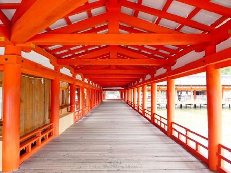 200525-宮島・厳島神社 (110)