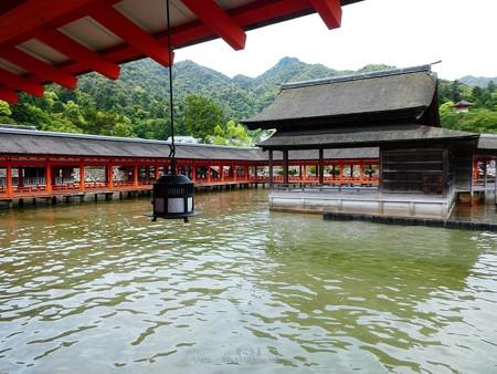 200525-宮島・厳島神社 (114)
