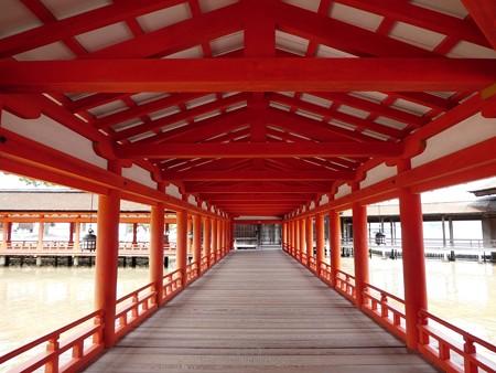 200525-宮島・厳島神社 (129)