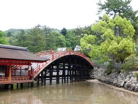 200525-宮島・厳島神社 (134)
