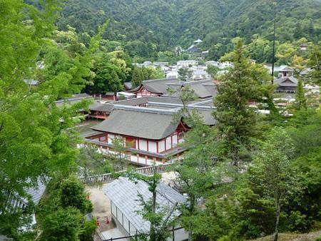 200525-宮島・厳島神社 (146)