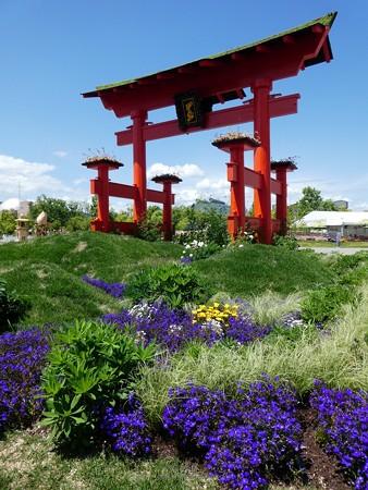 200525-ひろしまはなのわ 広島風景ゾーン (2)