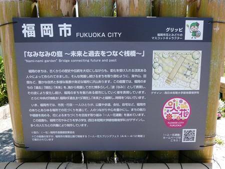 200525-ひろしまはなのわ 県外花壇 (6)