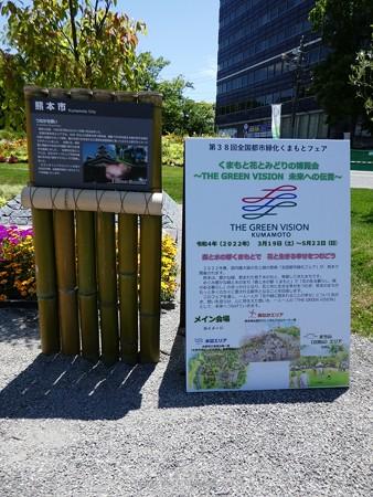 200525-ひろしまはなのわ 県外花壇 (15)