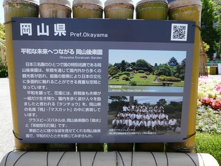 200525-ひろしまはなのわ 県外花壇 (30)