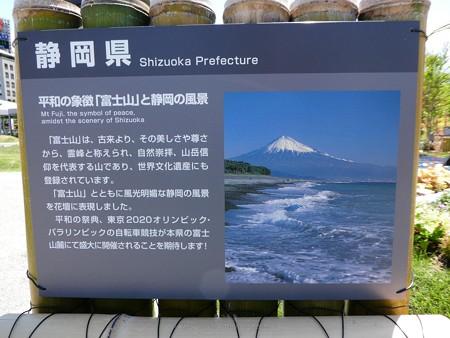 200525-ひろしまはなのわ 県外花壇 (38)