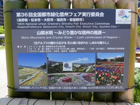 200525-ひろしまはなのわ 県外花壇 (46)