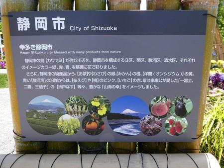 200525-ひろしまはなのわ 県外花壇 (58)