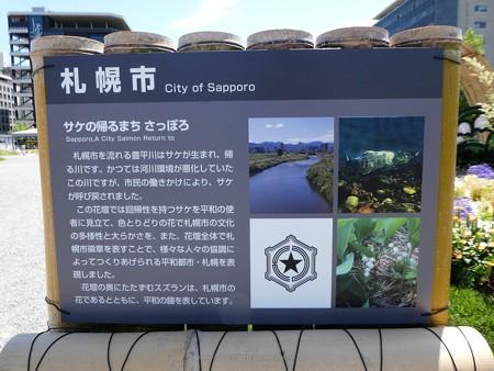 200525-ひろしまはなのわ 県外花壇 (70)