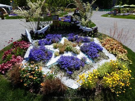 200525-ひろしまはなのわ 県外花壇 (72)
