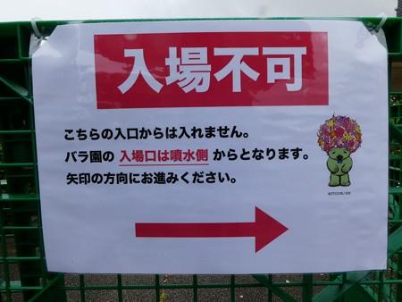 200601-山下公園 (5)