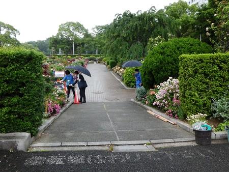 200601-山下公園 (8)