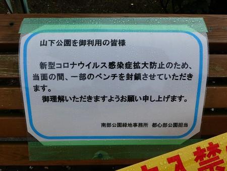 200601-山下公園 (18)