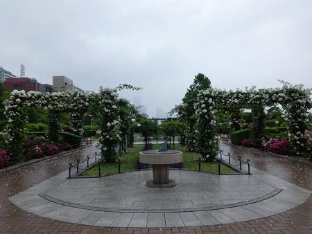200601-山下公園 (34)
