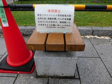 200601-山下公園 (38)