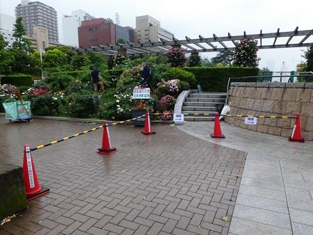 200601-山下公園 (43)