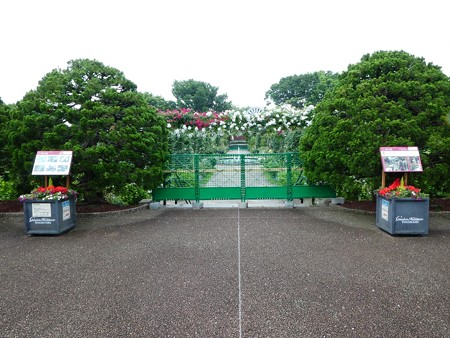 200601-港の見える丘公園 (2)