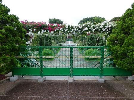 200601-港の見える丘公園 (3)