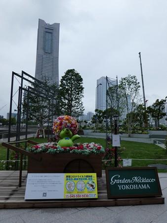 200601-ガーデンベアフォトスポット@新市庁舎 (1)