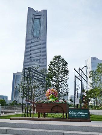 200605-ガーデンベアフォトスポット@横浜市新市庁舎 (1)